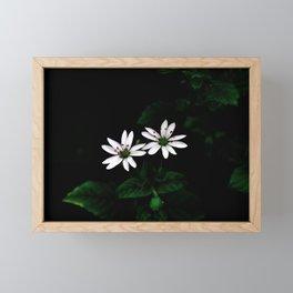 Botanical Still Life Little White Flowers Framed Mini Art Print
