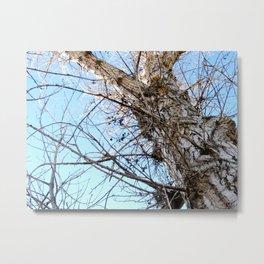 Tree Naked Metal Print