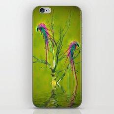 Fantasy Parrots iPhone & iPod Skin