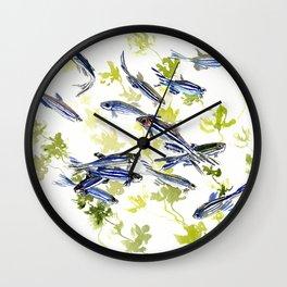 Fish Blue green fish design zebra fish, Danio aquarium Aquatic design underwater scene Wall Clock