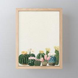 Cactus Garden Framed Mini Art Print