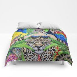 Welcome to the Amazon Comforters