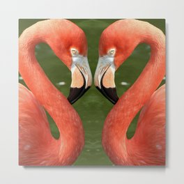 Flamingo_20170701_by_JAMFoto Metal Print