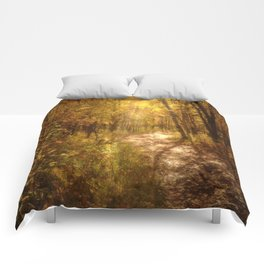 The Colors of Fall Comforters
