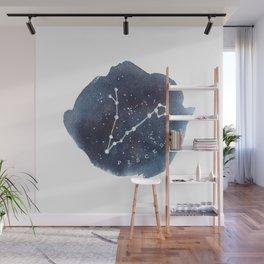 pisces constellation zodiac Wall Mural