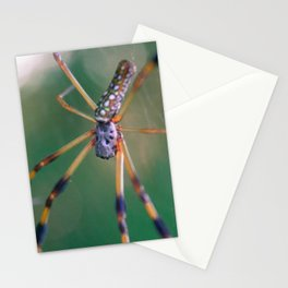 Orbweaver macro Stationery Cards