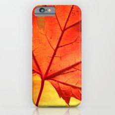 maple leaf - square iPhone 6 Slim Case