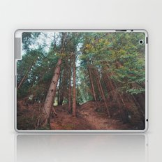 into the woods 05 Laptop & iPad Skin