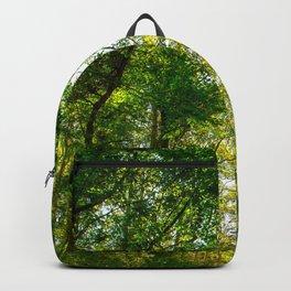 Green Road Backpack