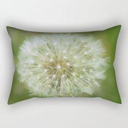 Fruit of a Common Dandelion (Taraxacum officinale) growing wild in grassland. Rectangular Pillow