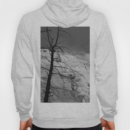 Mystical View Over Minerva Spring Hoody
