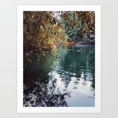 Heavenly Pond in Franklin Canyon Park, CA Art Print