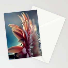 Nobody's Perfect Stationery Cards