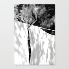 Wash Day Canvas Print
