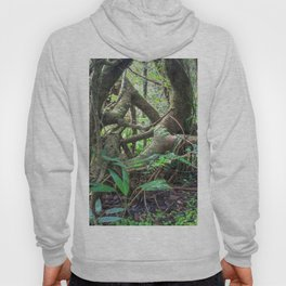 Dancing trees in the cloud forest  -  Tradewinds trail El Yunque rainforest PR Hoody