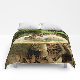 Toad Stool. Comforters