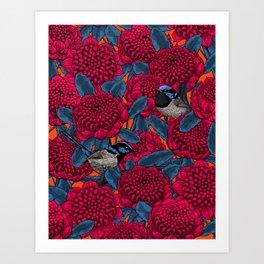 Red waratah and fairy wrens Art Print