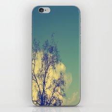Lone Light iPhone & iPod Skin