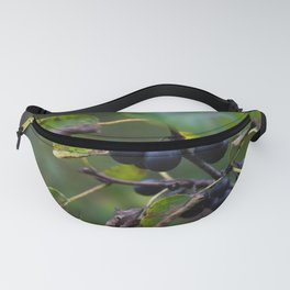 Floral 06 Fanny Pack