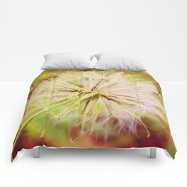 Seed Head Comforters