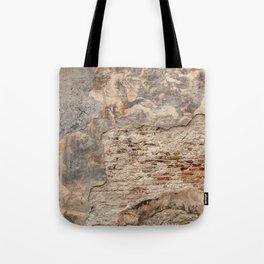 Renaissance Wall Tote Bag