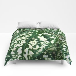 Green and white leafed plant Comforters