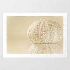 Sea Urchin No. 2 Art Print