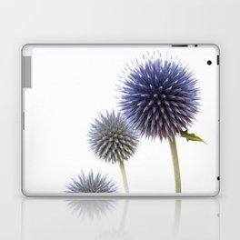 Echinops - Globe Thistles #1 #decor #art #society6 Laptop & iPad Skin