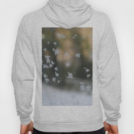 "It's frosty ""Ice Flower"" #1 #art #society6 Hoody"
