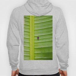 Alone on the leaf. Hoody