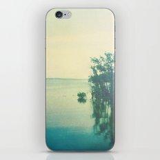 Mirage iPhone & iPod Skin
