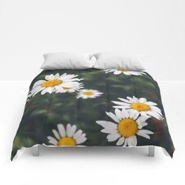 Daze-y Daisies Comforters
