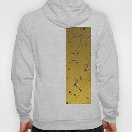 Confetti & Gold Festive Hoody