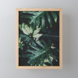 Tropical Rainforest Framed Mini Art Print