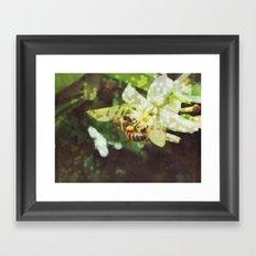 Honey Bee: Emerald Framed Art Print