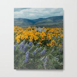Oregon Spring Wildflower Hillside Metal Print