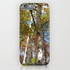 Birch Trees in Autumn iPhone 6s Slim Case
