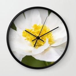 White Krinkled Peony in Bloom Wall Clock