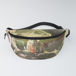 Turtle Turtle Fanny Pack