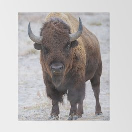 In The Presence Of Bison #society6 #decor #bison by Lena Owens @OLena Art Throw Blanket