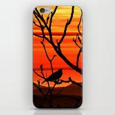 Blackbird's dusk iPhone & iPod Skin