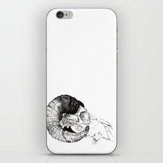 Skull study iPhone & iPod Skin