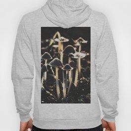 Wild Mushroom's Forest Hoody