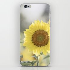 Sunflower Flower Photography, Yellow Sunflowers Floral Nature Photography iPhone & iPod Skin