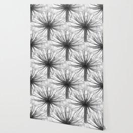 Black and White Dandelion Wallpaper