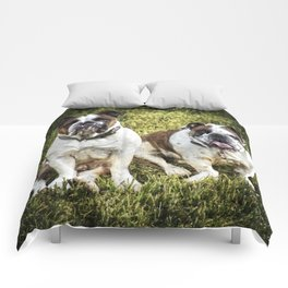 Fred and Ethel Comforters