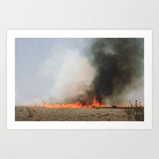 Grass Fire Art Print
