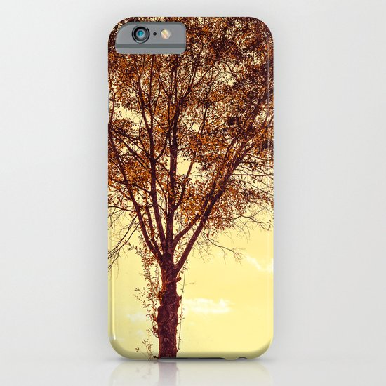 Sunny Tree iPhone & iPod Case