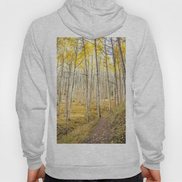 Fall Colors, Yellow Woods Hoody