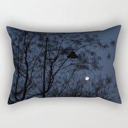 Escaped light Rectangular Pillow